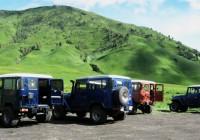 Harga Sewa Jeep Wisata Bromo